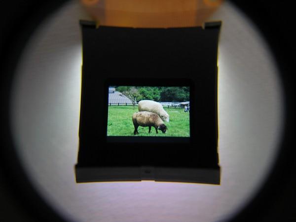 Epson электронный видоискатель камеры lcd